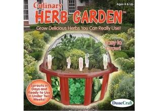 herb garden 30