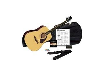 silvertone essential guitar 100